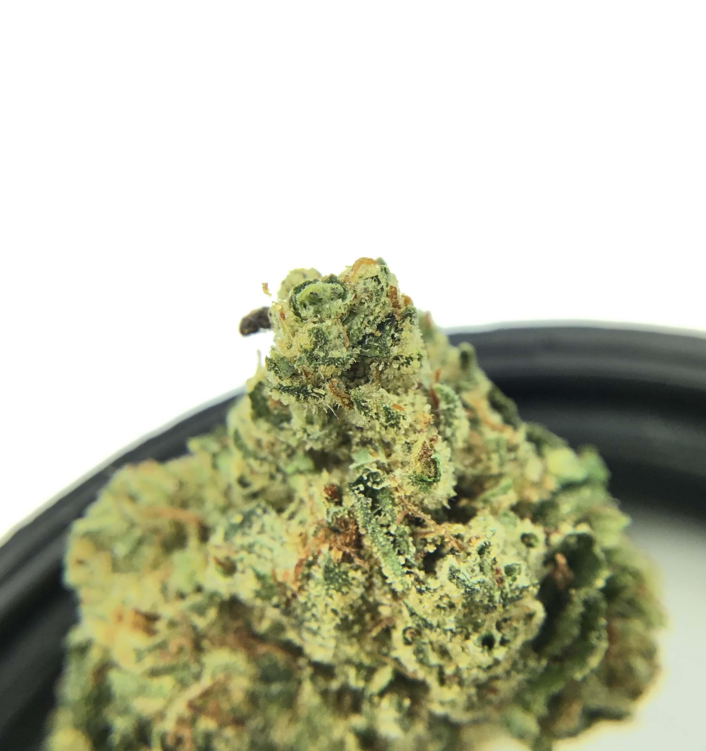 CHAI Cannabis Co